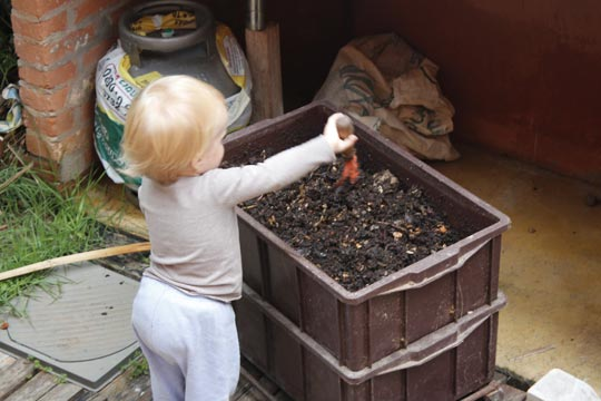 Martim se diverte e brinca com o lixo orgânico.