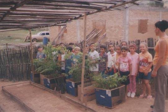 Desde 2002, estudantes plantam mudas e distribuem para a comunidade reflorestar as margens dos rios.