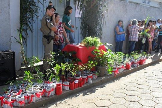 Gratuitas, as mudas estimulam a comunidade a cuidar do meio ambiente.