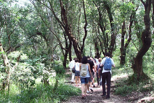 Frequentadores passeiam pelo bosque do CEU Alvarenga.
