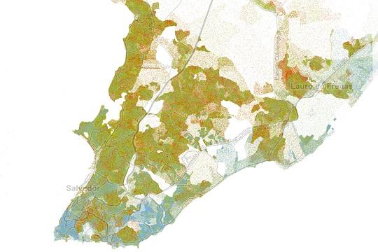 Com dados do Censo 2010, Mapa Racial permite que, através da interação, o usuário vá atrás de suas próprias informações.