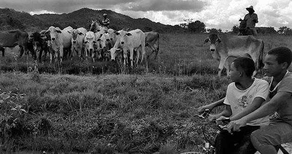 Vão de Almas é a mais isolada, a 90 quilômetros da cidade de Cavalcante. A energia elétrica está sendo lentamente implantada, e muito de seu transporte ainda é feito a pé ou por animais de carga vagarosos.