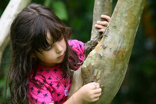 Através de diversas ações, Projeto Criança e Natureza pretende retomar conexões entre infância e meio ambiente, hoje fragilizadas nos ambientes urbanos.