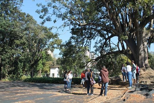 Seminário Educação Ambiental semeando a Cidade Educadora aproxima a agenda entre os conceitos e afina seus objetivos.