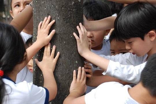 O seminário internacional A Criança e os Novos Objetivos do Desenvolvimento Sustentável (ODS) ocorreu na última quarta-feira (30/11), em São Paulo.