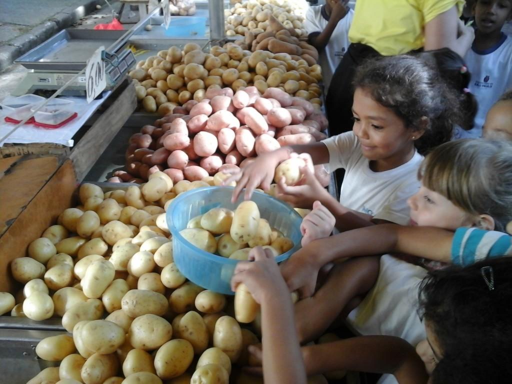 Crianças da EMEI Dona Leopoldina visitam a feira da região