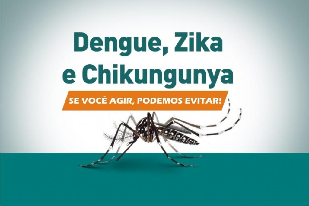 Campanhas do governo federal focaram no combate doméstico ao mosquito