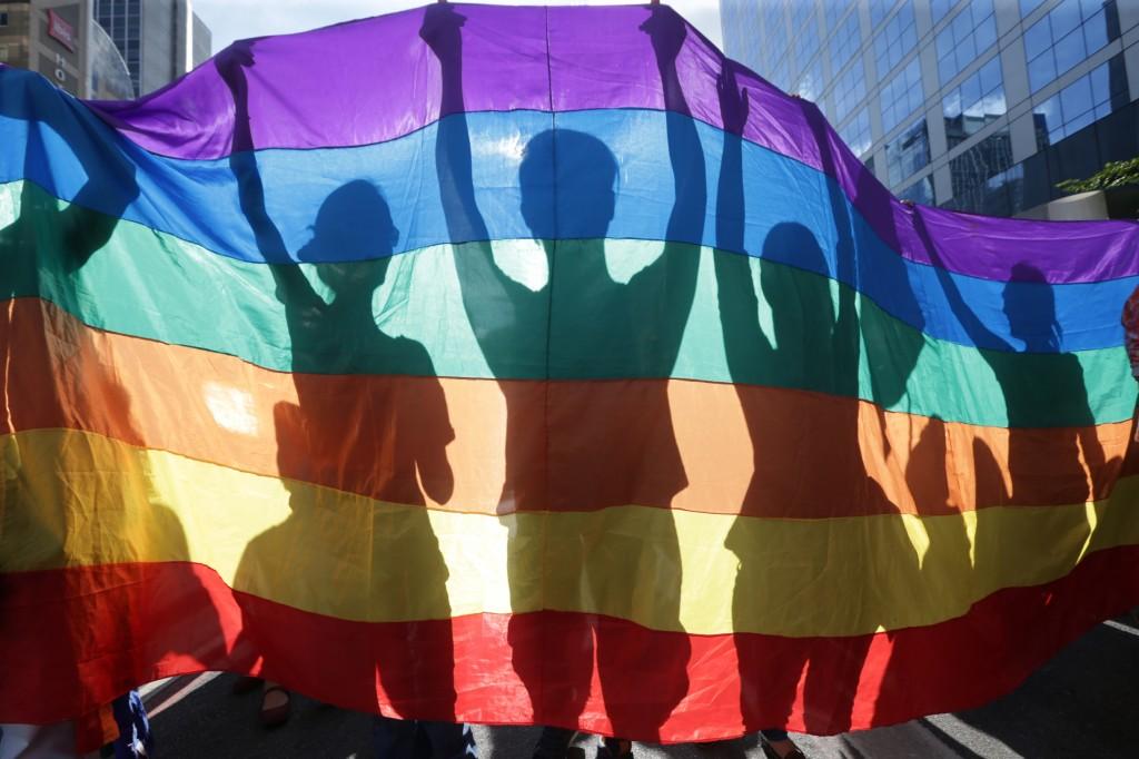 Caminhada das Lésbicas e Bissexuais em São Paulo (2015)