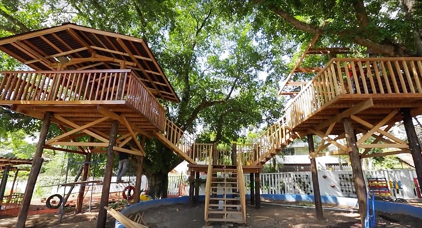 casa da árvore na emei dona leopoldina