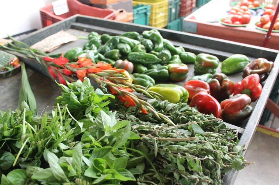 cenoura, pimentão e outras hortaliças em uma barraca