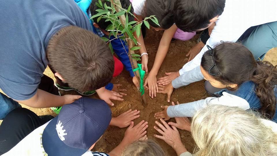 uma roda de crianças planta uma muda na terra