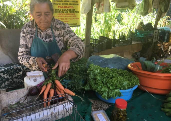 Projeto Cidades Sem fome: esverdeando a cidade com agricultura urbana