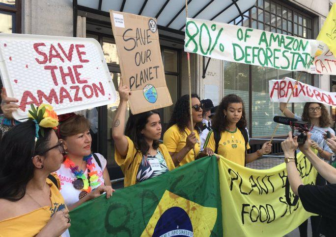 Em defesa da Amazônia: por que manifestantes estão nas ruas pelo mundo