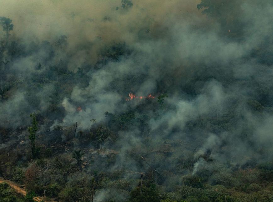 queimadas no Pará vista de cima pelo greenpeace