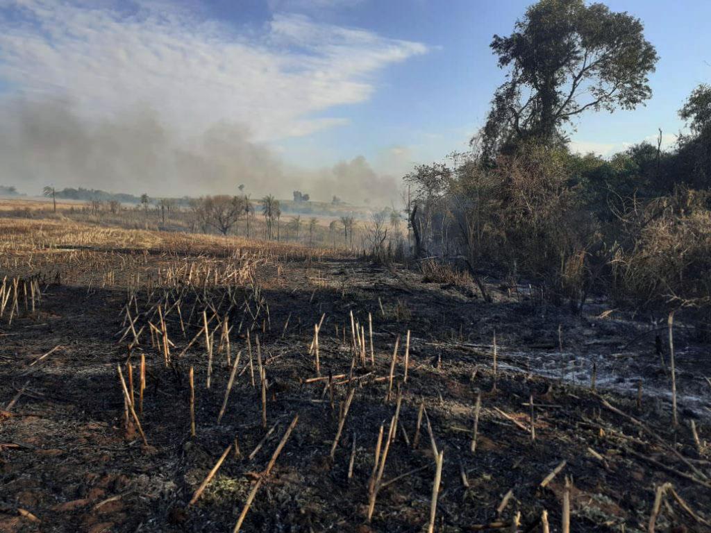 Foram registrados 70 mil focos de incêndio entre janeiro e agosto pelo INPE no país