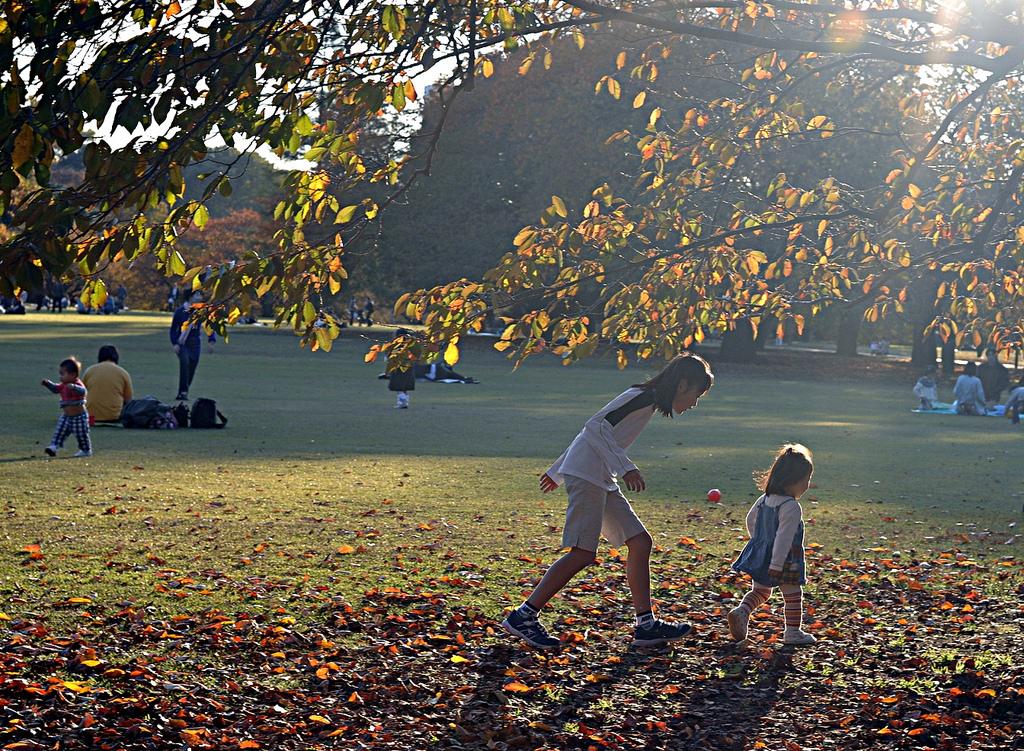 espaços verdes são fundamentais nas cidades para crianças