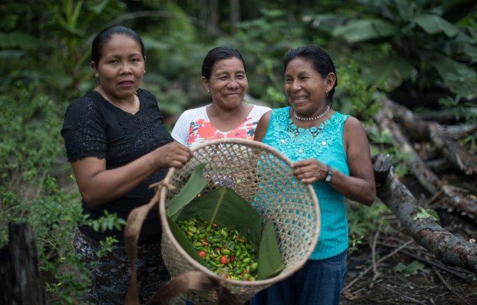 São Paulo recebe debate aberto sobre patrimônio agroalimentar