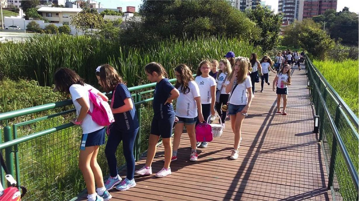 Crianças fazendo aula de educação ambiental no Parque banhado da Vergueiro.